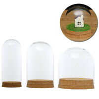 With Wood Cork Plant Glass Cover Table Accessories Plants Decor High Quality Hot