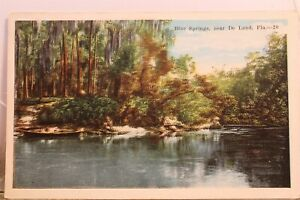 Florida FL De Land Blue Springs Postcard Old Vintage Card View Standard Souvenir