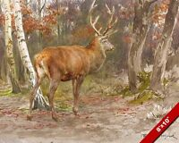 STAG WATCHING IN THE WOODS FOREST DEER OIL PAINTING ART REAL CANVAS GICLEEPRINT
