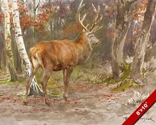 STAG WATCHING IN THE WOODS FOREST DEER OIL PAINTING ART REAL CANVAS GICLEE PRINT
