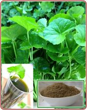 30g. Gotu Kola Powder; Centella asiatica POWDER 100% natural