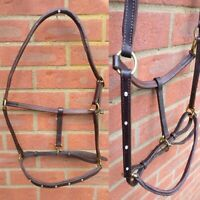 Equestrian Leather Stud Guard Jumping Girth Padded Eventing English Brown 50/'/'