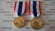FRANCE Médaille de la protection militaire du territoire - Bacqueville (fra 206)