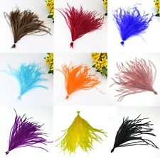 Beautiful Ostrich Wisps Feathers Fly Plume Craft Hat Arts Decorations Party UK