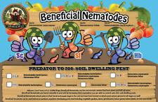 Beneficial Nematodes Steinernema carpocapsae Sc helps Biological Flea Control