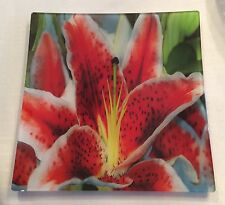 "STUNNING 11 7/8"" Square Prima Donna Art Glass TIGER LILY Serving Dish Plate"
