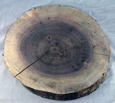 Circle Cut Black Walnut Live Edge Tree Log Slice Rustic Wedding Slab Log Cabin
