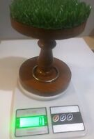 Falconry Digital Scale Made with Original AstroTurf and Ring