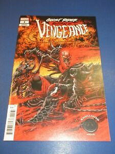 Ghost Rider Return of Vengeance #1 Knullified Variant NM Gem Wow