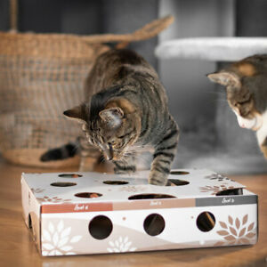 Katzenspielzeug Interaktiv Intelligenz Spielzeug Katzen Magic Box CanadianCat Co