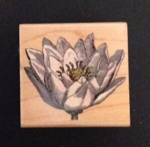 Hero Arts Poetic Petals One Rubber Stamp Flower E1862