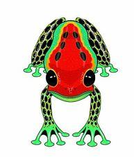 """WindNsun RainForest 44""""- Dart Frog"""