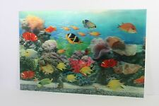 Tropical Fish Swimming 3D Picture Wall Art Ready To Frame 30x20cm New Moving Pic