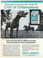 Vintage 1950's Ken-L-Biskit Labrador Lab Kennel Club dog pet food print ad