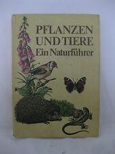 Needon/Petermann/Scheffel/Scheiba, Pflanzen und Tiere, Ein Naturführer, 1983
