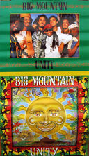 BIG MOUNTAIN POSTER, UNITY 1994 (B5)