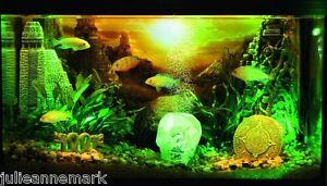 LOST CIVILISATION  HYDOR AQUARIUM DECORATIONS (Complete Underwater Theme)