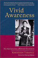 Vivid Awareness: The Mind Instructions of Khenpo Gangshar by Khenchen Rinpoche,