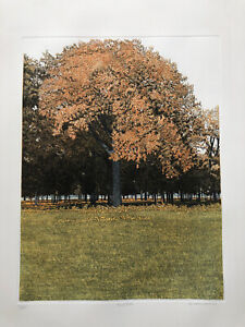 """PHILIP GREENWOOD b.1943 """"Red Oak""""Limited edition ETCHING 171/250 1980"""