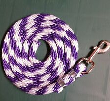 Horse Nylon Lead Rope 70 inches with brass  Swivel Snap - candy cane purple