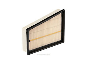 Ryco Air Filter A1974 fits Renault Megane 1.2 TCe (III) 97kw, 1.5 dCi (III) 81kw