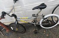 BMX Bike RARE Edition 1992 GT DYNO COMPe CHROME Fingerprint Detour Performer Pro