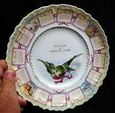 1909 vintage calendar plate / sweet bird flying souvenir of Andover Maine clean!