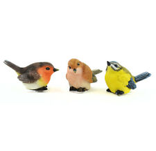 Miniature birds, Mini Orange, Brown, Yellow Birds, Miniature Finch, Robin, Wren