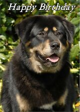 Tibetan Mastiff Dog Design A6 Textured Birthday Card BDTIBETANMASTIF2 paws2print