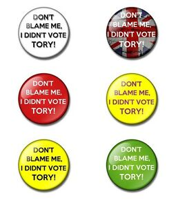 Don't blame me,I didn't vote Tory! 25 or 38mm button badge. Labour, Green, UKIP