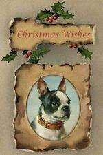 Boston Terrier Dog Portrait pre1918 Carl Reichert Large New Christmas Note Cards