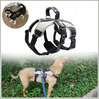 Secure Dog Harness - Escape-Proof Reflective Dogs Vest Walking Hiking Playing