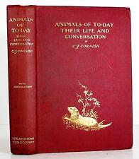 1899 ANIMAL BEHAVIOR ANIMALS OF TODAY WILDLIFE NATURE ILLUSTRATED HC 1ST CORNISH