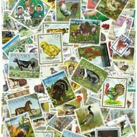 World Thematic Wild Animals Birds Fish 100 pcs Off Paper Stamps Collection Lot