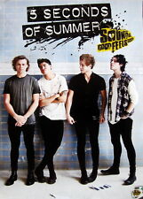 """5 Seconds Of Summer """"Sounds Good Feels Good""""Thailand Promo Poster-Group Standing"""