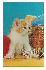 Vintage Animal Chrome Postcard Cats Kittens Pur r r r White and Red Yarn Basket