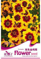 FD1222 Coreopsis Seed Double Colors Coreopsis Garden Flower ~1 Pack 50 Seeds~