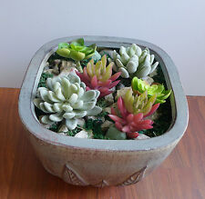 Artificial Mini Desert Plants Set of 6 Mini Snowball Succulents Grass Landscape