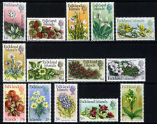 Flowers Falkland Island Colony Stamps