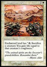 MTG Magic - (U) Odyssey - Animal Boneyard - SP