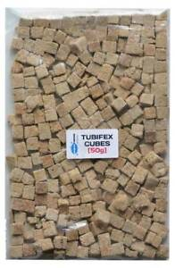 Tubifex Worm CUBES Tropical Aquarium Fish Food Best  Quality Freeze Dried  [50g]