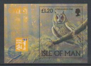 Isle of Man - 1997, Owls sheet - MNH - SG MS740