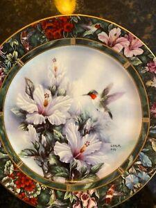 """Ruby-throated hummingbird "" display plate"
