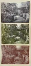 5 Photos Panchromogènes - Tirages d'époques 1900 - Pictorialisme -