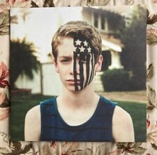 Fall Out Boy American Beauty / American Psycho 180 Gram Black Vinyl LIKE NEW
