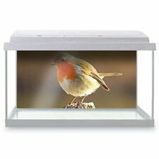 Fish Tank Background 90x45cm - Robin Redbreast Bird Animals Birds  #8701