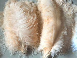 45-50cm Large Quality Champagne Ostrich Feather Long Wedding Party Costume Plume