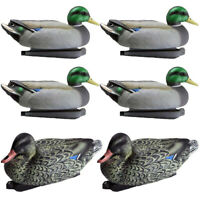 6x Water Mallard Duck Decoy Floating Male/Female Mallard Drake Decoy for Hunting