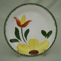 Blue Ridge Southern Potteries Mountain Meadow Bread & Butter Plate Hand Painted