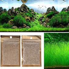 1x Aquarium Grassamen Wasser Wasserpflanze Pflanzen Samen Aquatic Aussaat Seed